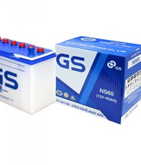 ac-quy-nuoc-gs-12v-45ah-ns60